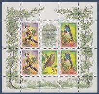 Bloc 5 Timbres (+1 Vignette) De Russie Oiseaux  Neufs - Songbirds & Tree Dwellers