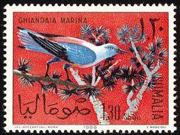 Somalie. Somalia. 1966   Rollier D'Europe   European Roller - Songbirds & Tree Dwellers