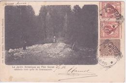 ITALIE - TORINO TURIN - ST VINCENT 1906 - JARDIN BOTANIQUE AU PLAN GORRET PRES DE COURMAYEUR - Non Classés