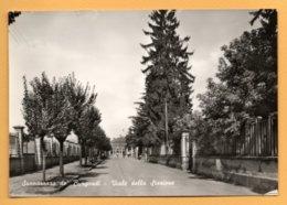 Sannazzaro De' Burgondi - Viale Della Stazione - Pavia