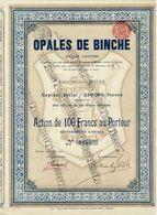 Titre Ancien - Opales De Binche - Société Anonyme - Titre De 1911 - N° 0173 -VF - Industrie