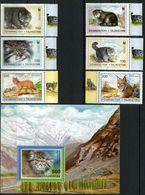 Tajikistan 1996 MiNr. 94 - 99 (Block 9) Tadschikistan WWF Pallas's Cats Manul  6v + S/sh  MNH** 18,00 € - Tadjikistan