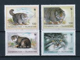 Tajikistan 1996 MiNr. 94 - 97 Tadschikistan WWF Pallas's Cats Manul 4v  MNH** 8.00 € - Tadjikistan