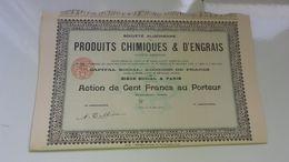 Algérienne De Produits Chimiques & D'engrais (1910) - Actions & Titres