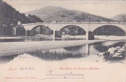 ITALIE - LUCCA - UN SALUTO DA PONT A MORIANO  1901 - Massa