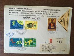 LIECHTENSTEIN - Lettres & Documents