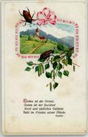 52110115 - Gedicht Goethe - Tierwelt & Fauna