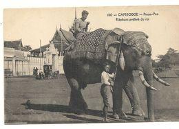 PHNOM PENH . ELEPHANT PREFERE DU ROI - Cambodia