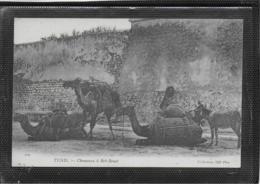 AK 0524  Tunis - Chameaux á Bab-Benat Um 1910-20 - Africa
