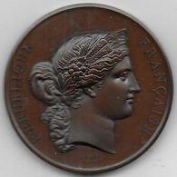 Médaille En Bronze Concours Agricole TARBES  1876 - Animaux Reproducteurs - Professionnels / De Société