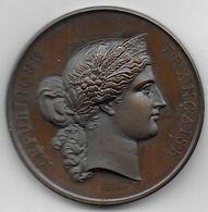 Médaille En Bronze Concours Agricole TOULOUSE  1877 - Animaux Reproducteurs - Professionnels / De Société