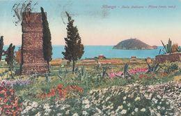Cartolina - Postcard /  Viaggiata -  Sent /  Albenga, Isola Galinara. - Savona