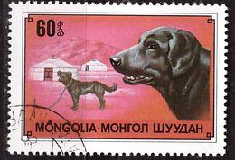 PIA - MONGOLIA - 1978  - Cane Pastore - (Yv   978) - Mongolie