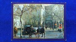 Subotica The Last Hackney Driver Serbia - Serbia