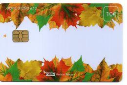 ISN-170 SPAIN PHONECARD ESPAÑA ISERN SERIE OTOÑO Nº10 (AUTUMM) -  CARD HOSPITAL TV - Basisuitgaven