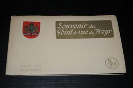 17010-              SOUVENIR DE FREYR / 10 CARTES - Hastière