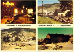 """48 - Florac - Cabrillac - Restaurant """"Les Hauts De Hurlevent"""" - Multivues - Florac"""