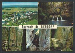 +++ CPSM - Luxemburg - Luxembourg - Souvenir De BERDORF - Multivues - Echternach  // - Echternach