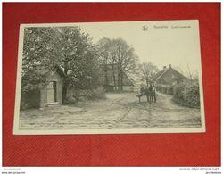 KASTERLEE  -  Zicht  Oosteinde - Kasterlee