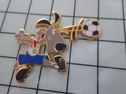 115e Pin's Pins / Beau Et Rare / THEME : SPORTS / FOOTBALL MONDIAL 94 USA (Merci Ginola !) MASCOTTE Par STARPIN'S - Fútbol