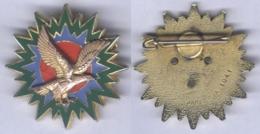 Insigne De L'Etat Major Des Forces Aériennes Tactiques ( 46 Mm ) - Fuerzas Aéreas