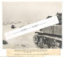 Photo ORIGINALE - Guerre 40/45 -Concentration De Véhicules Blindés Et Chars US En Belgique Avant De Se Rendre Au Front. - 1939-45