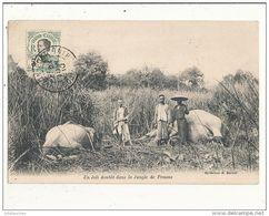 VIET NAM CHASSE A L ELEPHANTS UN JOLI DOUBLE DANS LA JUNGLE DE PENONS CPA BON ETAT - Vietnam
