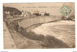 CP ALGÉRIE ENVIRONS D'ALGER SAINT EUGENE LES DEUX CHAMEAUX - 1906 - N° 107 - 2 Scans - Alger