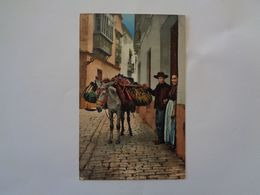 Sevilla. - Un Hortelano. (20 - 8 - 1912) - Sevilla
