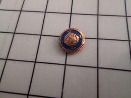 316b Pin's Pins / Beau Et Rare / THEME : AUTRES / MINI MINI PIN'S REPRESENTANT ? - Pin's