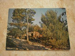 "62 Camiers, Camping ""Les Sables D'or"" (GF1663 - Francia"
