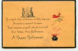 N°15557 - Carte Gaufrée - A Night The Witches ... A Happy Halloween - Sorcière Sur Son Balai Au-dessus D'un Chaudron - Halloween