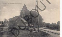 Postkaart - Carte Postale - Wortel -   Steenweg Van Hoogstraten (B519) - Hoogstraten