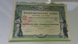 ETABLISSEMENTS PINEL (imprimerie RICHARD) Grenoble,isère - Actions & Titres