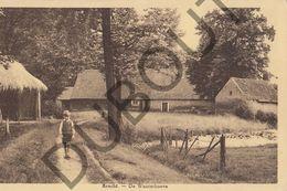 Postkaart - Carte Postale - Brecht - De Wauterhoeve  (B586) - Brecht