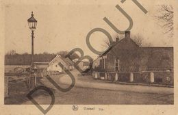 Postkaart - Carte Postale - Viersel - Dijk   (B520) - Zandhoven