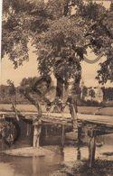 Postkaart - Carte Postale - Westerlo - Qualbeekbrug  (B611) - Westerlo