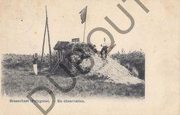 Postkaart - Carte Postale - Brasschaat - Polygone   (B598) - Brasschaat