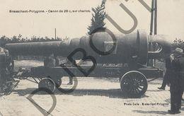 Postkaart - Carte Postale - Brasschaat - Polygone - Canon De 28c, Sur Chariot  (B608) - Brasschaat