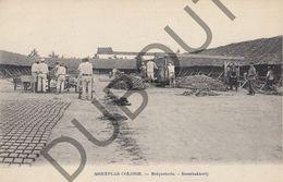 Postkaart - Carte Postale - Merksplas - Colonie - Steenbakkerij  (B530) - Merksplas