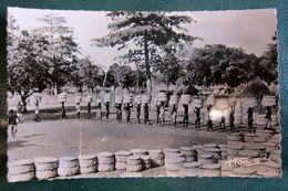 218 Récolte Du Coton - Chad