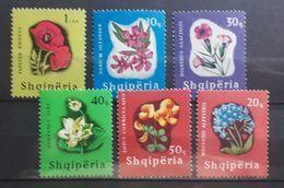 Albanien 1965, Blumen Mi 988-93 MNH Postfrisch - Albania
