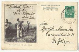 Kingdom Yugoslavia , Carte Postale - Kosaci U Backoj Used  1938 - Entiers Postaux