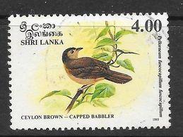 Sri Lanka 1993 Endemic Birds Babbler  Rs4.00 Used Stamp SG1243 - Sri Lanka (Ceylan) (1948-...)