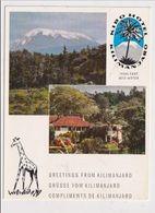 KENYA -  AK 382065 Kibo Hotel - Kilimanjaro - Kenya