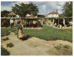(C 3) Tonga ? Market Scene - Tonga