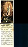 16477a)   Madonna  Di Lourds - Virgen Mary & Madonnas