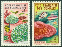 SOMALI COAST 1963 MARINE LIFE, CORALS** (MNH) - Maritiem Leven