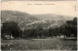 3YD 535 CPA - COLLONGES - VUE PANORAMIQUE - Autres Communes
