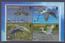 2010Montserrat1524-1527VBWWF / Birds7,00 € - W.W.F.